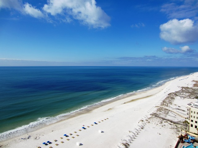 Availibility for Phoenix West 2 Orange Beach, AL 1711 Vacation Rental