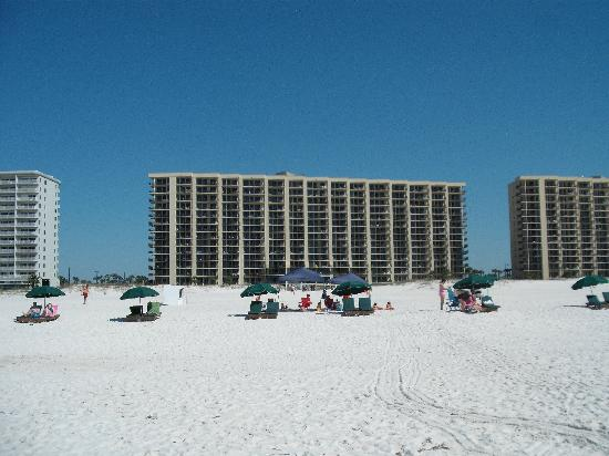 Availibility For Phoenix Vi Orange Beach Al 801 Vacation